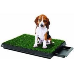 Tapete Higiênico para PET de 60cm x 40cm